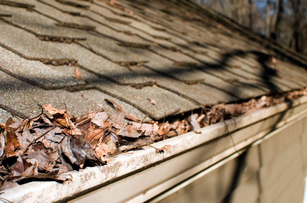home gutter maintenance